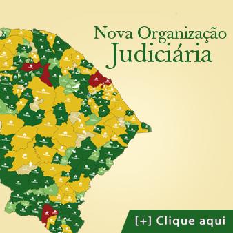 NOVA ORGANIZAÇÃO JUDICIÁRIA