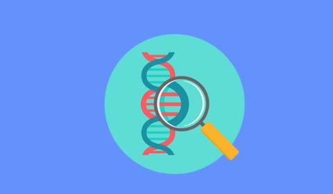 Enquete TJCE: 77% são favoráveis a exame que identifica risco de doenças genéticas em filhos