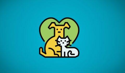 Enquete TJCE: 79% dos internautas são favoráveis a projeto de lei que criminaliza o abandono de animais
