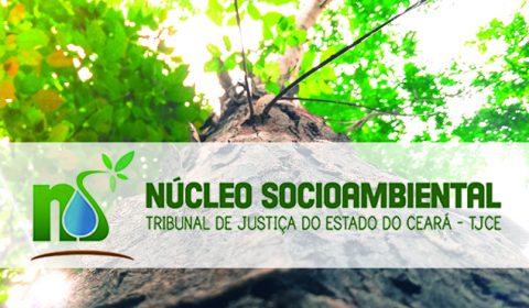 TJCE inicia nesta terça-feira ações pelo Dia Mundial do Meio Ambiente
