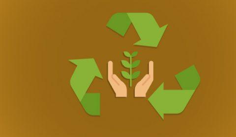 Enquete do TJCE: 52% dos internautas reutilizam materiais e evitam desperdícios