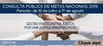 PESQUISA – METAS NACIONAIS 2019