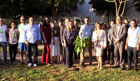 Fórum Clóvis Beviláqua celebra Dia do Meio Ambiente com plantio de mudas de árvores
