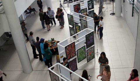 Exposição de imagens da Flora do Ceará abre programação da Semana do Meio Ambiente no Fórum