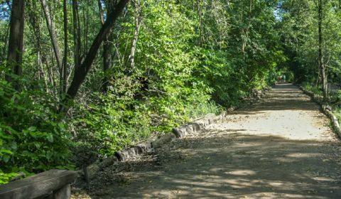 Justiça declara nulo decreto estadual que reduz zona de amortecimento no Parque do Cocó